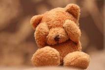 engrac3a7ado-fofo-ursinho-de-peluche-urso-boneco-querido-prenda-namorada-namorado-amor-aniversario-dia-dos-namorados-cutefunnyphotoscaredteddybearteddy-e0c2d9cdbf0fb0679a63
